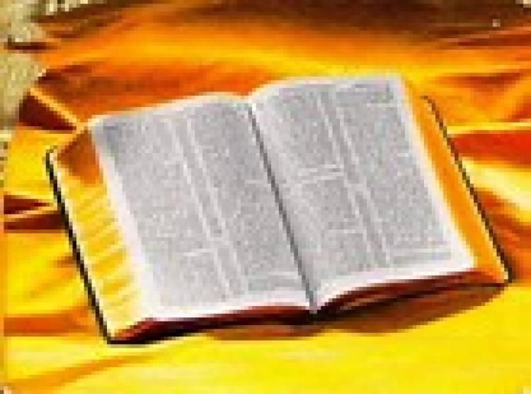 Quem lê mais a Bíblia se torna mais calmo, confiante e generoso, diz pesquisa