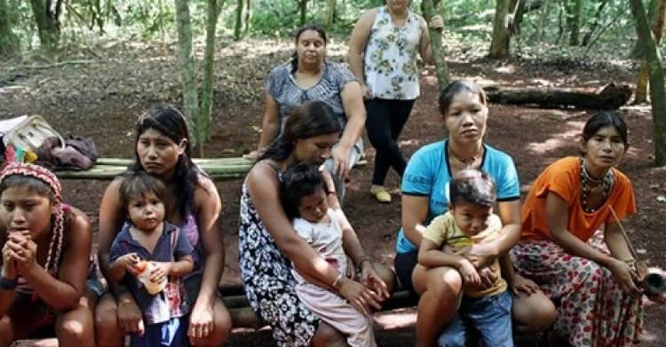 Juiz ignora decisão do STF e determina reintegração de posse contra aldeia Avá-Guarani