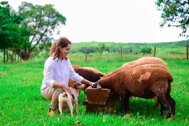 """""""Transformando Vidas"""": mais do que aumentar a lucratividade, ovinocultura levou Izilda a superar uma severa depressão"""