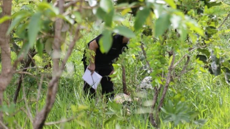 Pedestre é atropelado por caminhonete, arremessado e corpo encontrado 1h depois em matagal